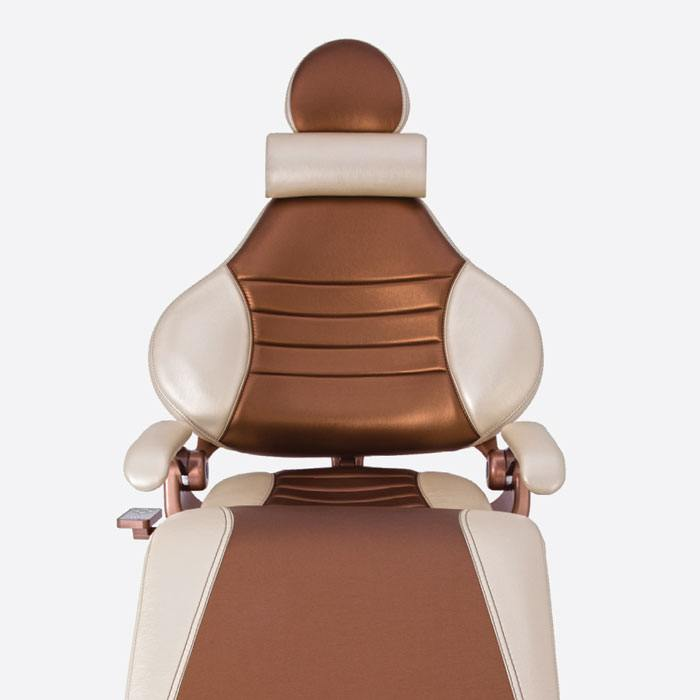 Brown Forest dental chair 3900 with neck pillow